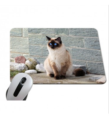 Tapis de Souris Rectangle