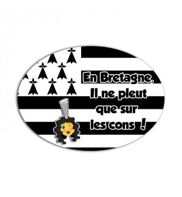 Magnet Ovale En Bretagne il...