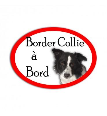 Magnet Ovale Border Collie...